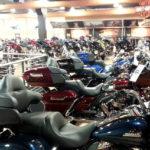 Daytona_Linkviajes_0222(0)